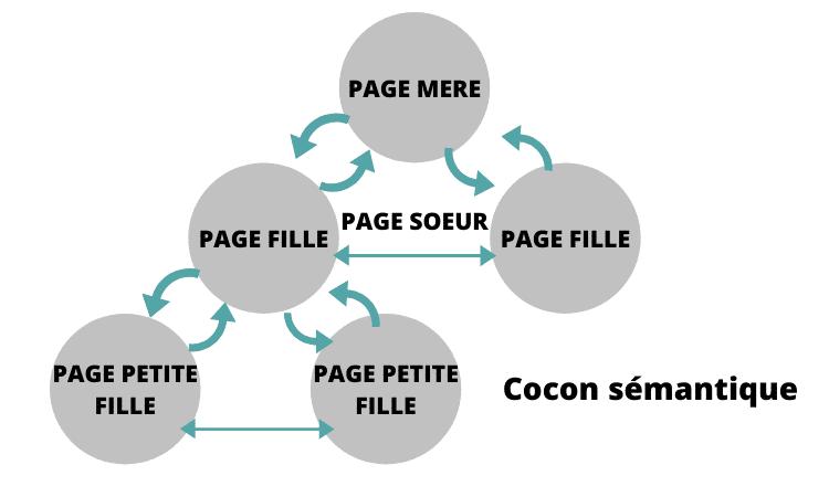 cocon-semantique